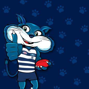 Geelong News Fixtures Scores Results Geelongcats Com Au
